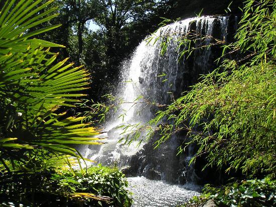 Iveagh-Gardens